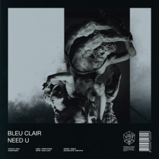 Cover Bleu Clair - Need U