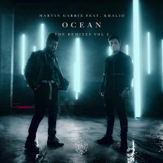 Cover Martin Garrix feat. Khalid - Ocean [Remixes Vol. 1]