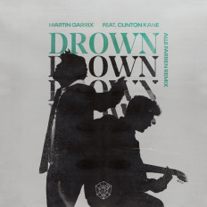 Cover Martin Garrix ft. Clinton Kane - Drown (Alle Farben Remix)