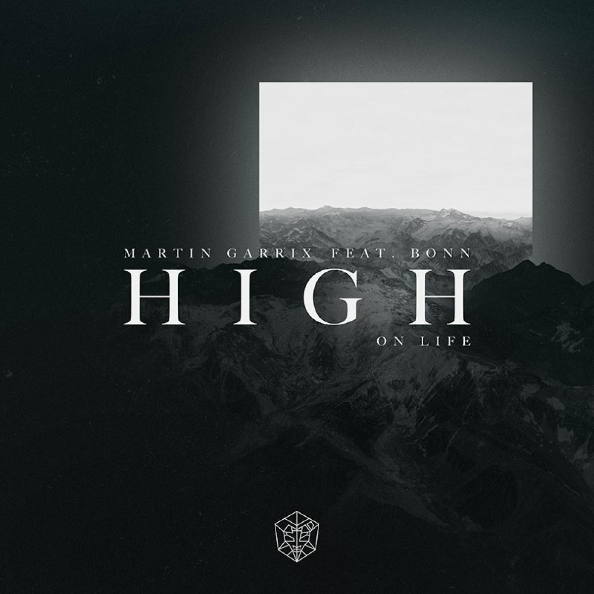 Cover Martin Garrix feat. Bonn - High On Life