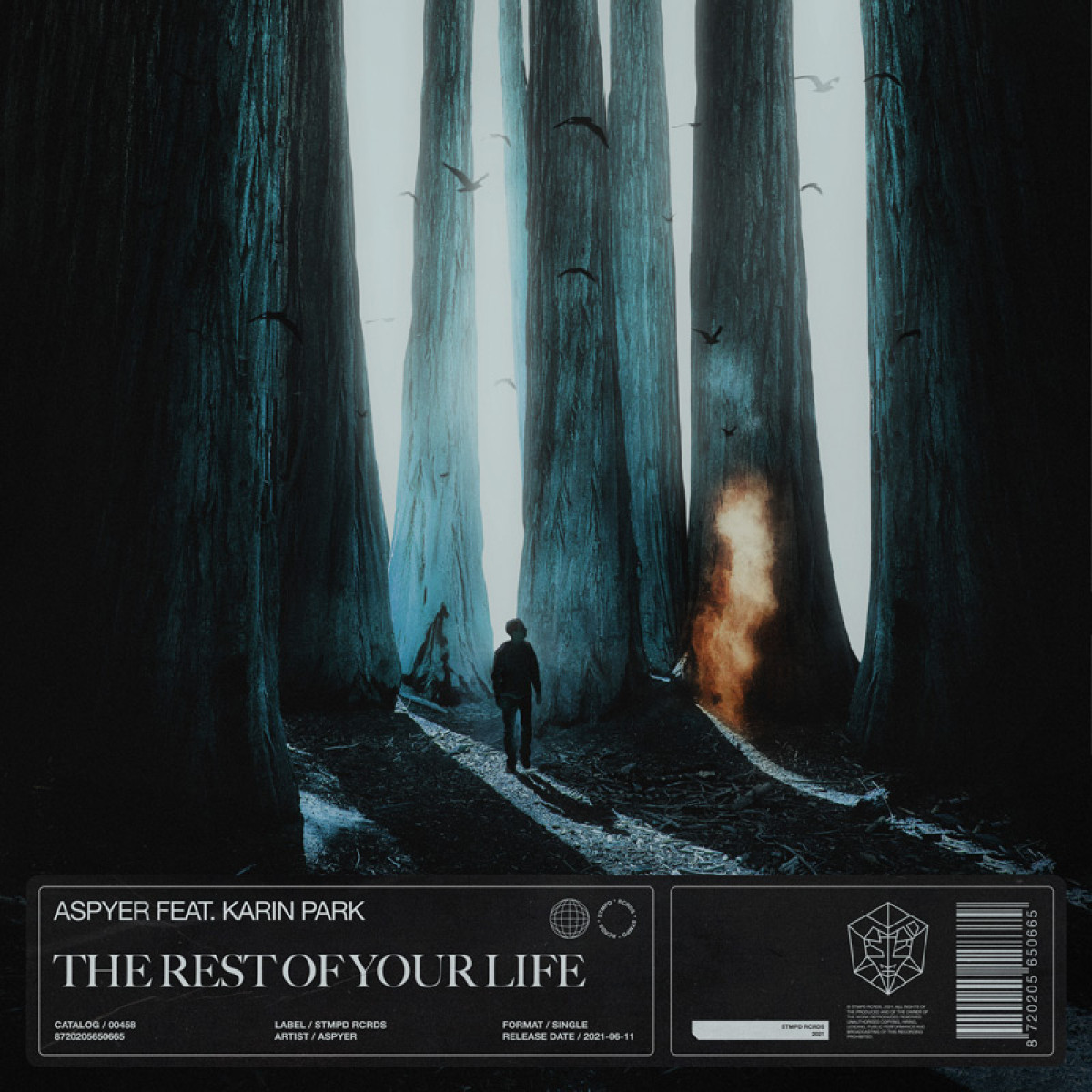 Cover Aspyer ft. Karin Park - The Rest Of Your Life