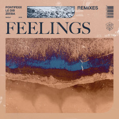 Cover Pontifexx, Le Dib & Zeeba - Feelings (Remixes)