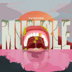 Cover TV Noise - Mumble