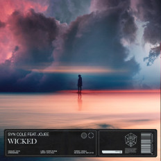 Cover Syn Cole feat. Jojee - Wicked