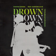 Cover Martin Garrix ft. Clinton Kane - Drown (The Subculture Remix)