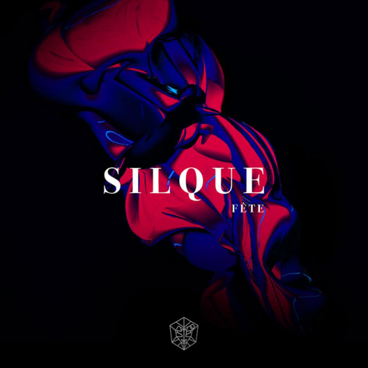 Cover Silque - Fête