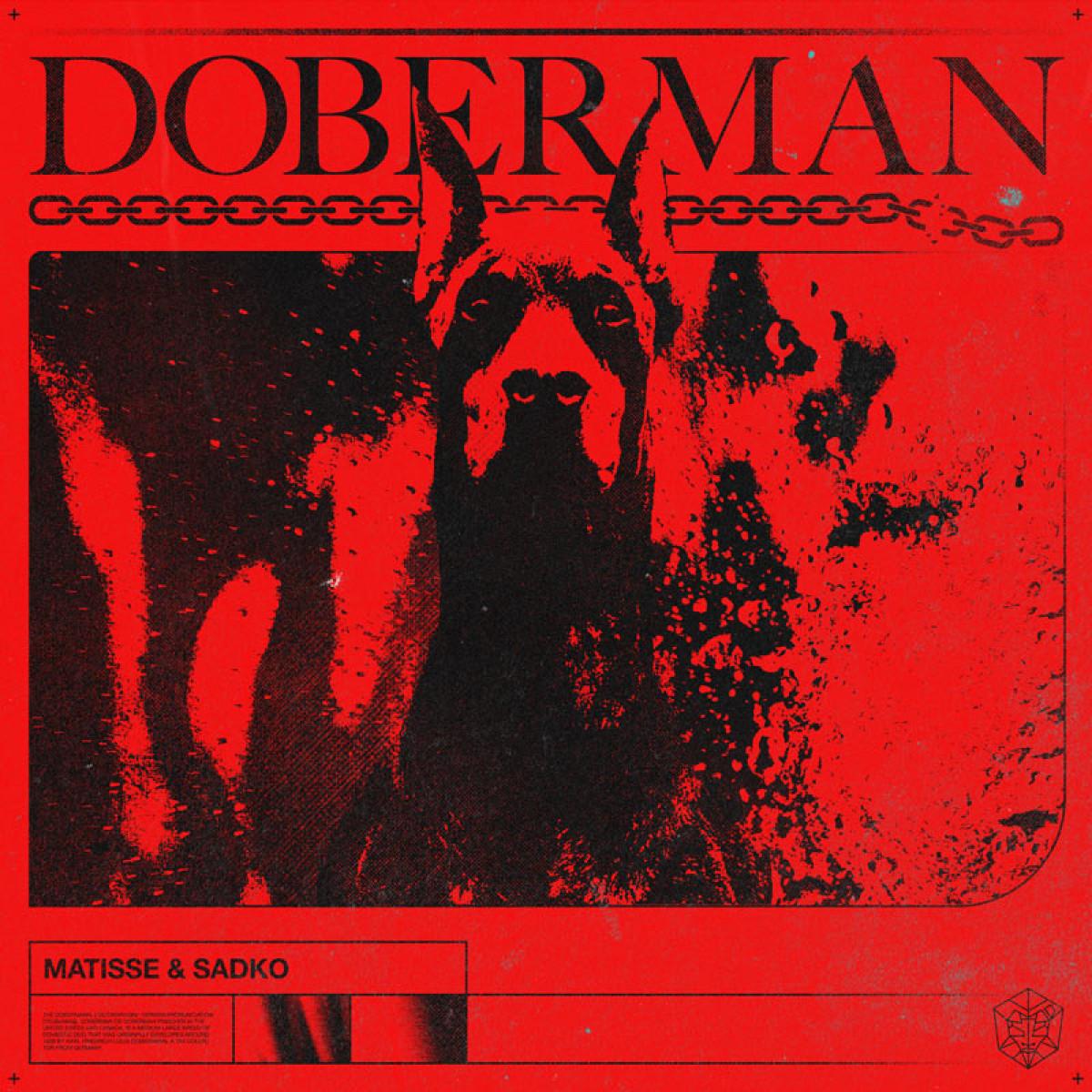 Cover Matisse & Sadko - Doberman