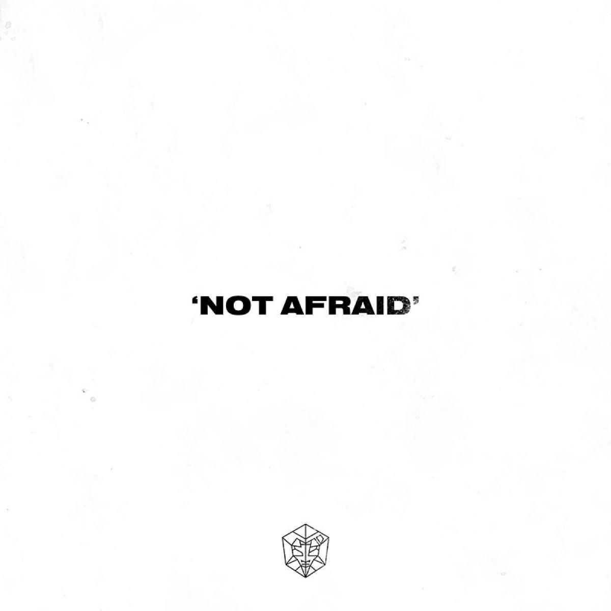 Cover HL:DR - Not Afraid